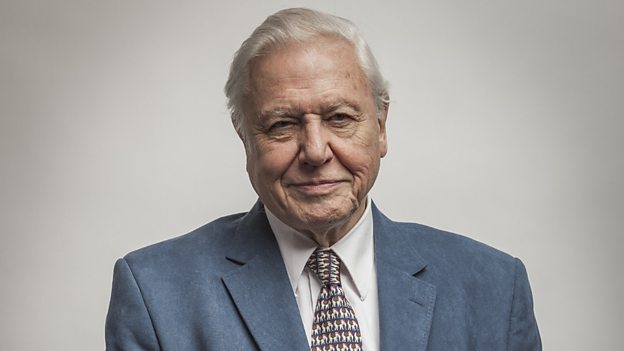 Sir David Attenborough introduces the most recent evidence for an aquatic past.
