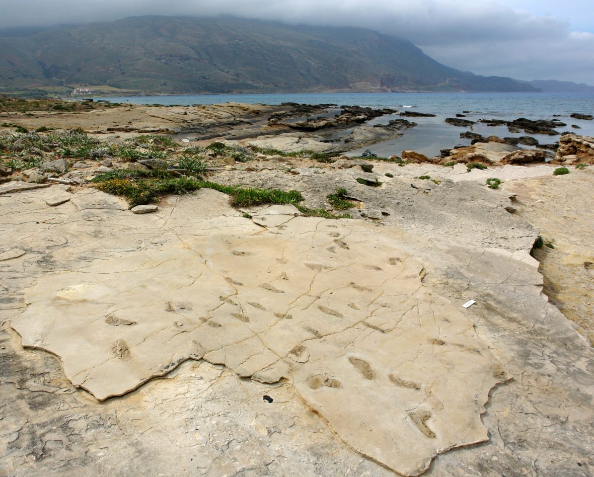 Hominin fossil footprints from Trachillos, Crete
